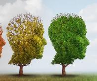 Maladie d'Alzheimer : les capacités cognitives varient avec les saisons