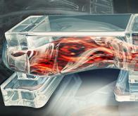 Bio-bots : des robots biologiques musclés et imprimés en 3D