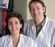 Cancer du cerveau : enfin des avancées
