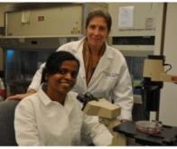 Cancer du côlon : espoir de traitement avec l'identification d'une protéine kinase clé