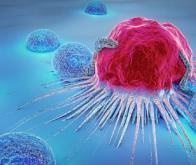 CANCER : Le composé qui fige les cellules tumorales