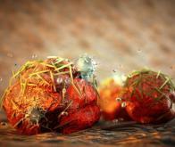 Cancer : quand les nanoparticules tiennent la forme !