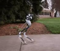 Cassie, le robot bipède qui va livrer vos colis