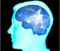"""Cerveau : identification d'un """"interrupteur"""" responsable de l'épilepsie"""