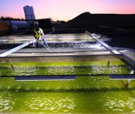 Chimie verte et biocarburant : le fonctionnement d'une photoenzyme clef décrypté