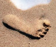 Comme les empreintes digitales, les traces de pas sont uniques