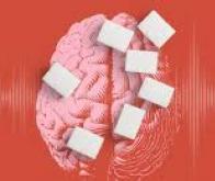 Comment une alimentation trop riche transforme notre cerveau