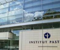 Covid-19 : deux études de l'Institut Pasteur, riches d'enseignements…