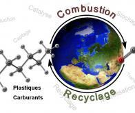 De l'araignée aquatique au catalyseur bioinspiré pour la transformation du CO2 en carburant