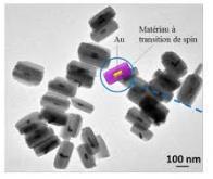 De l'or en nanobarreau pour un stockage de l'information moins énergivore