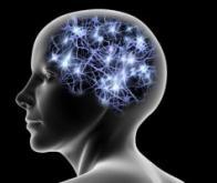 De nouvelles thérapeutiques pour restaurer la mémoire altérée par l'âge