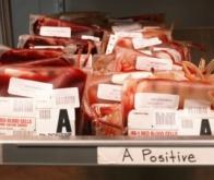 Découverte de deux nouveaux groupes sanguins