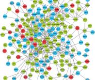 Découverte d'un nouveau mécanisme génétique impliqué dans l'autisme