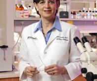 Découverte d'un peptide efficace à la fois contre le cancer, les troubles neurologiques et les ...