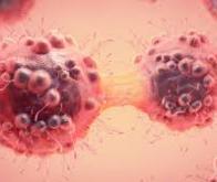 Découverte d'une nouvelle voie de signalisation moléculaire contre le cancer et les infections
