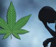 Dépression et cannabis : le cercle vicieux…