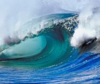Depuis 300 millions d'années, jamais les océans n'ont été aussi acides