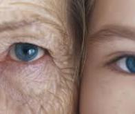 Des chercheurs parviennent à inverser un processus de vieillissement cellulaire chez l'Homme