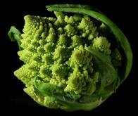 Des extraits de brocoli pour lutter contre le cancer