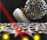 Des nanoparticules biodégradables comme alternative à la chimiothérapie