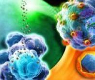 Des nanoparticules utilisées pour combattre les maladies neurodégénératives