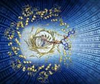 Des nanopores bactériens pour le stockage de données