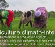 L'agriculture biologique peut-elle nourrir toute la planète ?