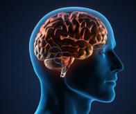 Le cerveau : prochaine télécommande universelle ?
