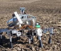 Les robots envahissent l'agriculture !