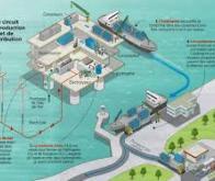 En Vendée, Lhyfe lance la première unité française d'hydrogène vert