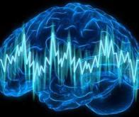 Épilepsie : un algorithme pour prédire les crises