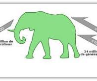 Évolution des mammifères : devenir géant prend du temps