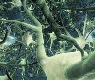 Google crée un réseau de neurones capable de prédire s'il va pleuvoir à la minute près