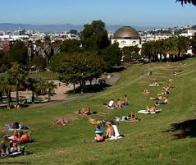 Habiter près d'un espace vert améliorerait la santé mentale