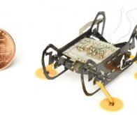 HAMR-E, le robot araignée