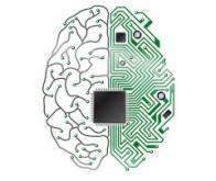 IBM présente un cerveau -numérique- de rongeur avec 48 puces neuromorphiques