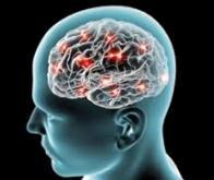Identification de marqueurs précoces de maladies neurodégénératives chez des personnes à risque