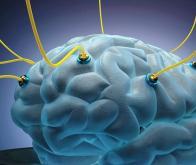 Informatique du futur : le cerveau s'impose comme modèle