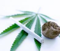 La consommation régulière de cannabis double le risque d'AVC !