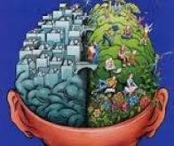 La créativité : une affaire de connexion entre les deux hémisphères du cerveau ?
