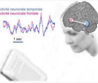 La lecture : un vrai travail d'équipe dans le cerveau