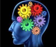 La molécule capable de rétablir les fonctions cognitives
