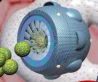 La nanomédecine s'impose dans la lutte contre le cancer