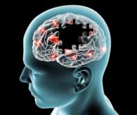 La pollution routière augmente les risques de démence et de Parkinson