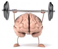 L'activité physique aurait des effets favorables sur la régénération de la gaine de myéline