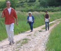 L'activité physique réduit la mortalité, même chez des patients âgés et  fragiles sur le plan ...