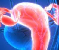 L'alphathérapie : nouvelle arme contre le cancer des ovaires