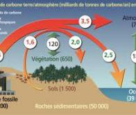 Le carbone souterrain influe sur la composition de l'atmosphère des planètes