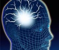 Le cerveau modifie son fonctionnement avec l'âge pour rester effficace