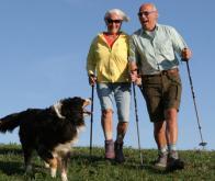 Le chien, meilleur ami de la santé de l'homme ?